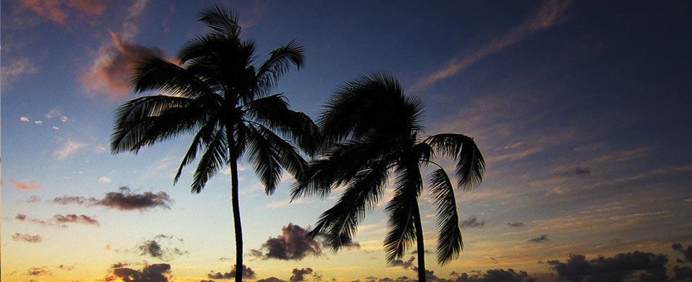 Aloha Hawaii Time lapse video