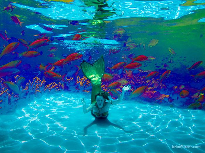 Mermaid Citrine underwater